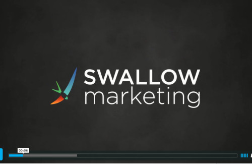 Swallow Video